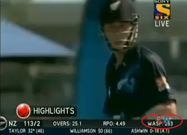 WASP has been trending in the cricketing world since Sunday's ODI encounter between India and New Zealand. Photo Courtesy: Paul McClean's Youtube channel