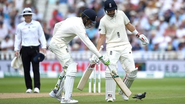 Shoo! Joe Root and Keaton Jennings try to send the errant pigeon away © Getty Images