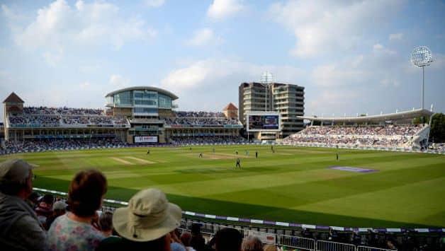 cricket-new