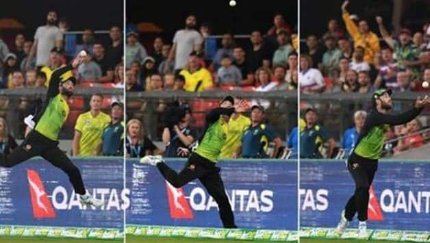 VIDEO: Glenn Maxwell take unbelievable catch in T20I against South Africa