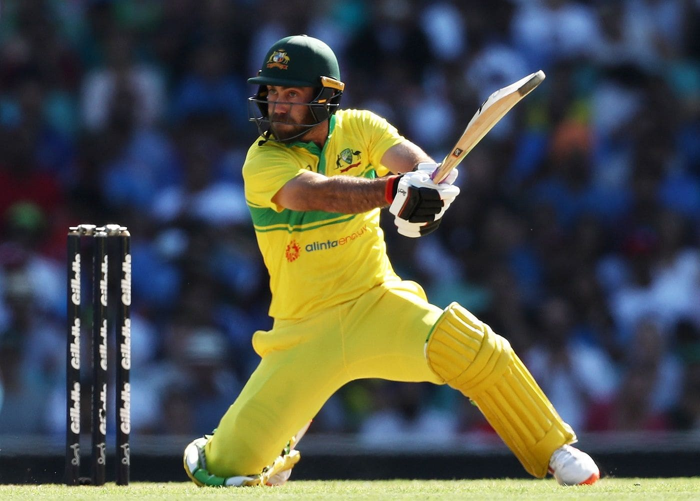 Batting at No 7 in ODIs is 'perfect position' for Glenn Maxwell: Justin Langer