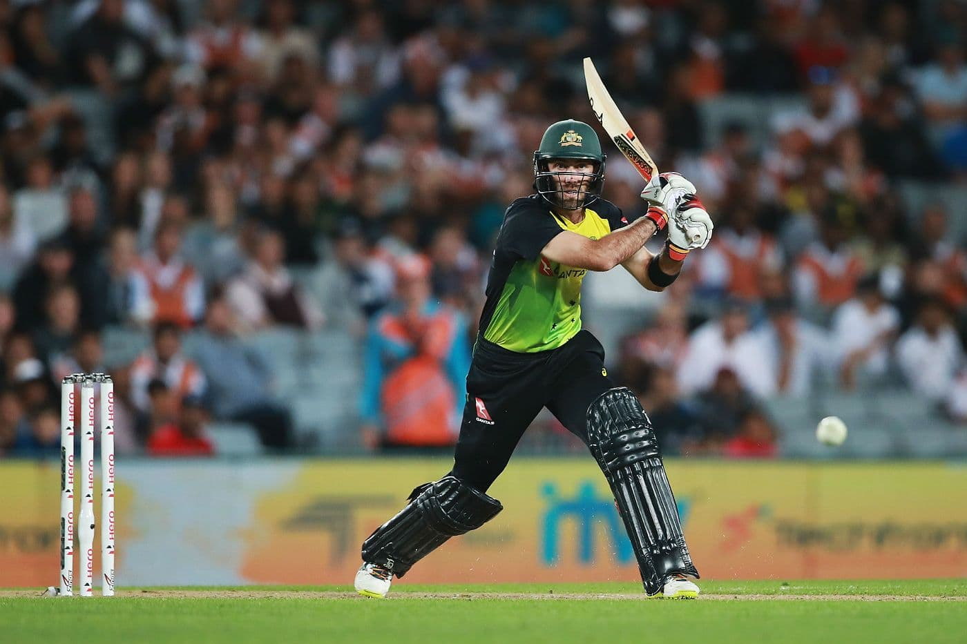Australian Cricket Awards: Glenn Maxwell named T20 Player of the Year