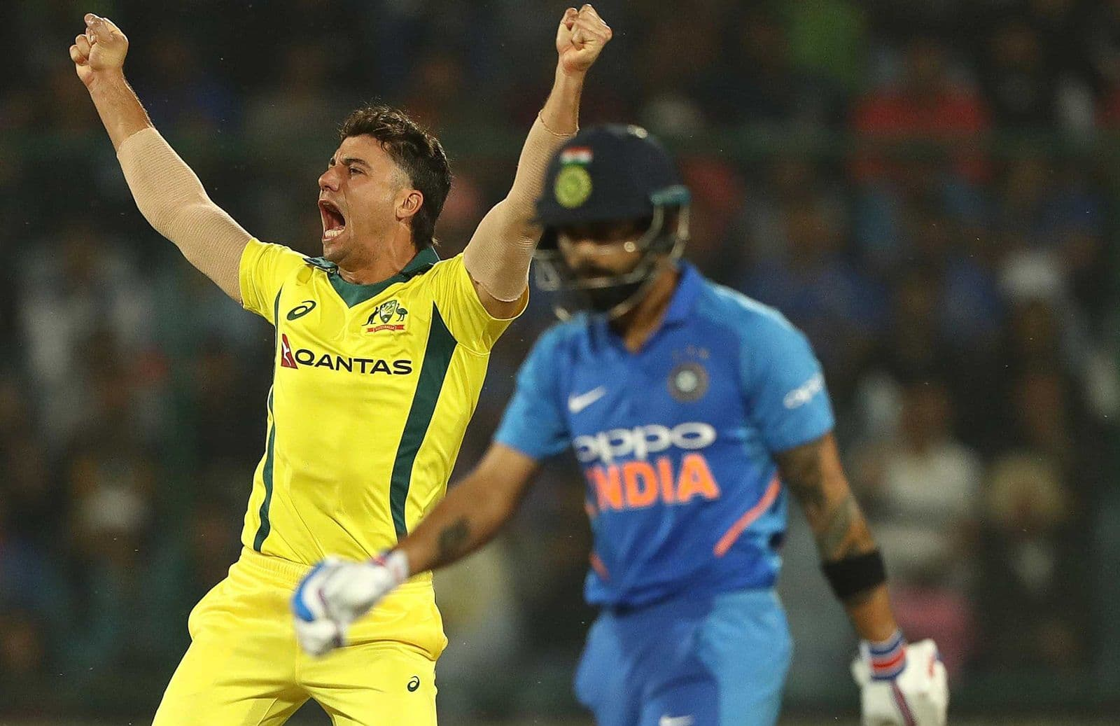 Marcus Stoinis celebrates getting Virat Kohli for 20.