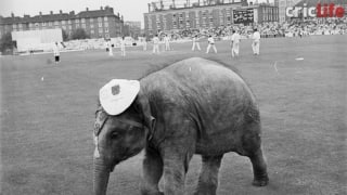When Lord Ganesha came to bless Indian team in England
