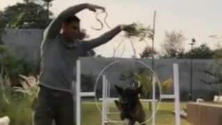 Watch MS Dhoni enjoys time off training his Dutch Shepherd dog