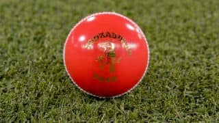 New Zealand cricketers wish to test pink ball
