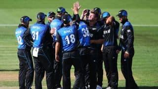 Bugs invade Seddon Park during NZ-Ban tie at Hamilton