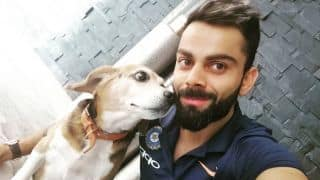 IPL 2019: RCB to make matches pet-friendly at M Chinnaswamy Stadium