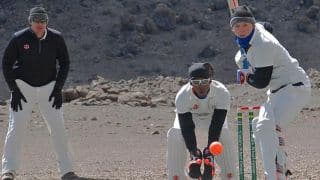 Cricket on Mt. Kilimanjaro