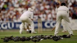 When cricketers replaced carrier pigeons