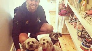 PHOTO: Peter Siddle shares picture with his dogs, promoting adoption
